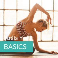 Strala yoga Flow BASICS