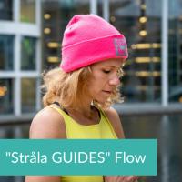 Guides Flow